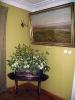 Фрагмент експозиції з картиною «Український степ», худ. Й. Хелмонського
